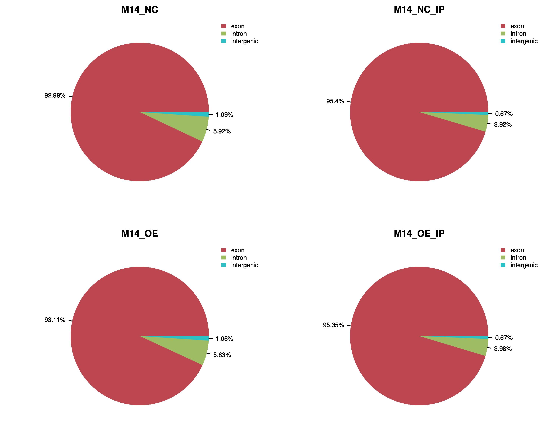 m6A-seq report